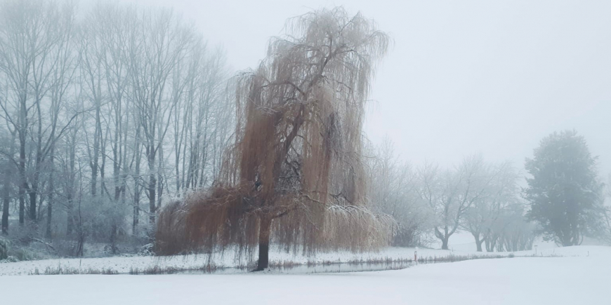 Greenkeeping im Winter